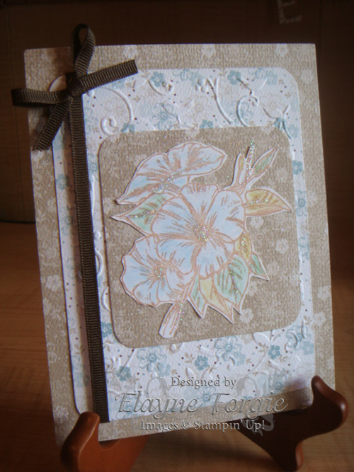 stampin up cards. I used Stampin#39; Up Parisian